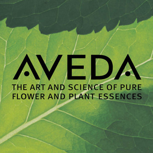 aveda salon spa bowling green